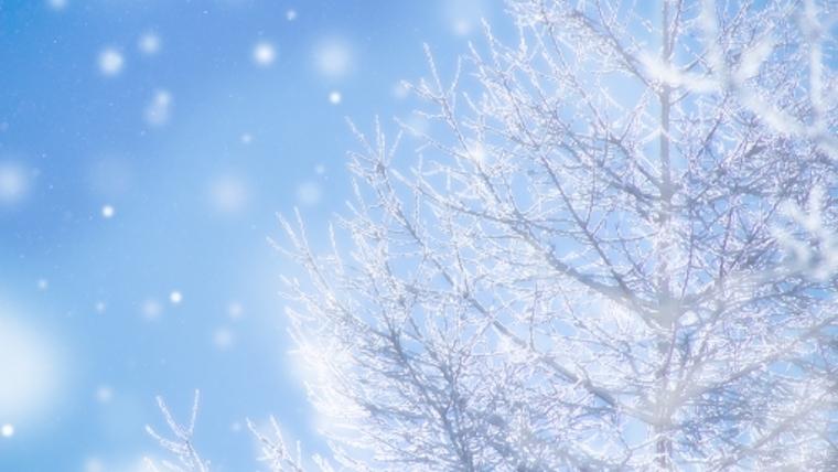 冬コスメ 2020 カレンダー 一覧
